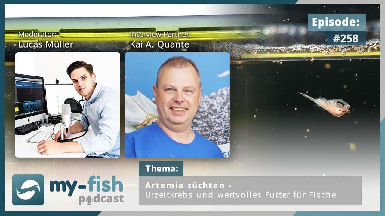 258: Artemia züchten - Urzeitkrebs und wertvolles Futter für Fische (Kai A. Quante) 1