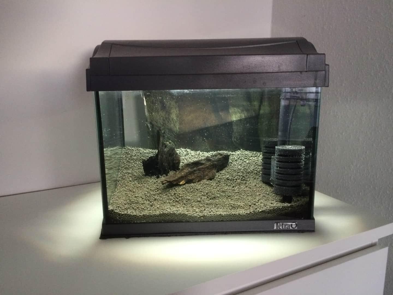 262: Garnelen im Aquarium halten - So machst du deinen Filter garnelensicher 4