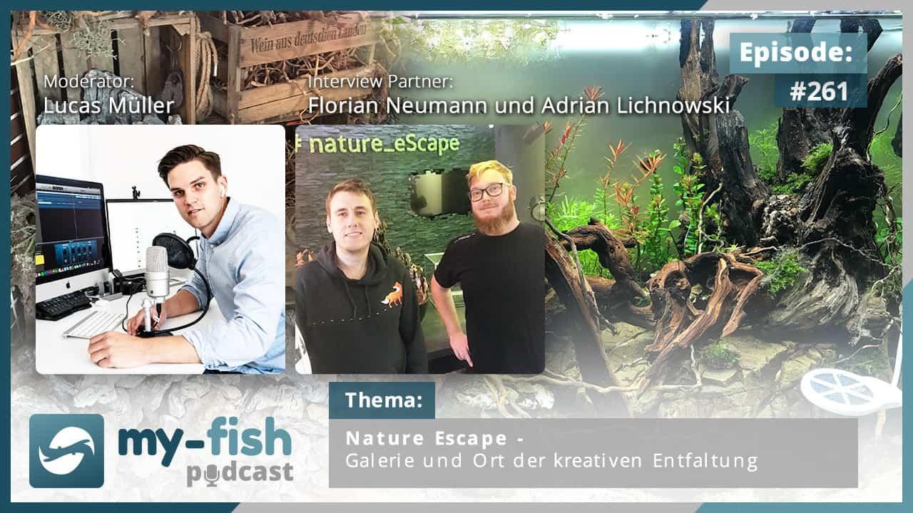 261: Nature Escape - Galerie und Ort der kreativen Entfaltung (Florian Neumann und Adrian Lichnowski) 1