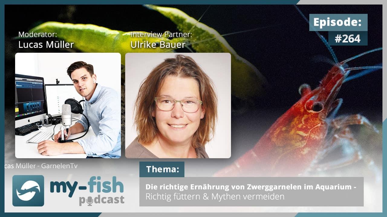 Podcast Episode #264: Die richtige Ernährung von Zwerggarnelen im Aquarium - Richtig füttern & Mythen vermeiden (Ulrike Bauer) 1