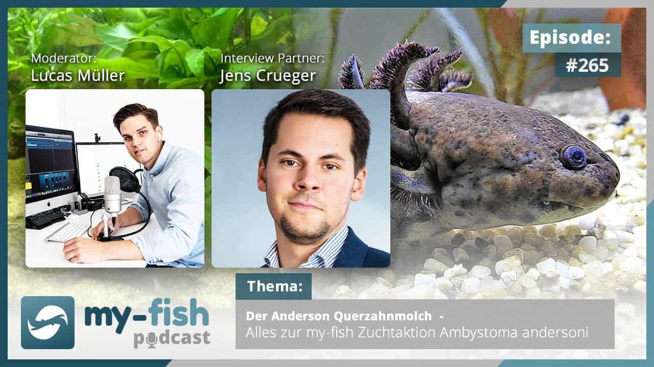 274: Der my-fish Podcast Jahresrückblick 2020 - 45 Episoden mit interessanten Personen aus der Aquaristik 11