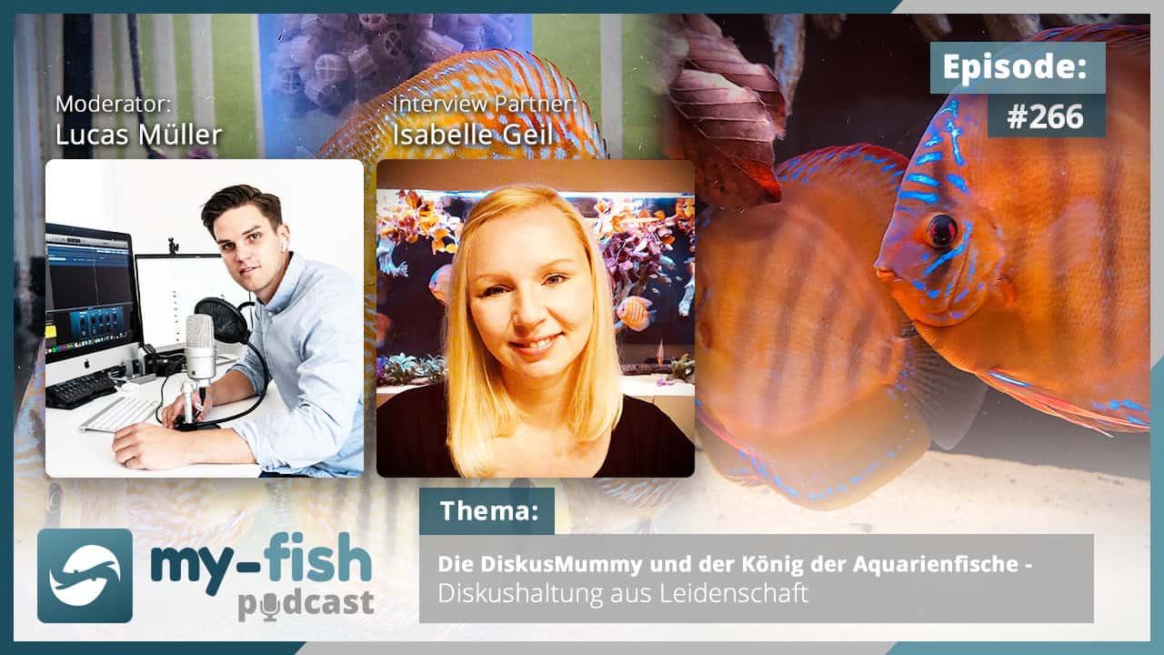 Podcast Episode #266: Die DiskusMummy und der König der Aquarienfische - Diskushaltung aus Leidenschaft (Isabelle Geil) 1