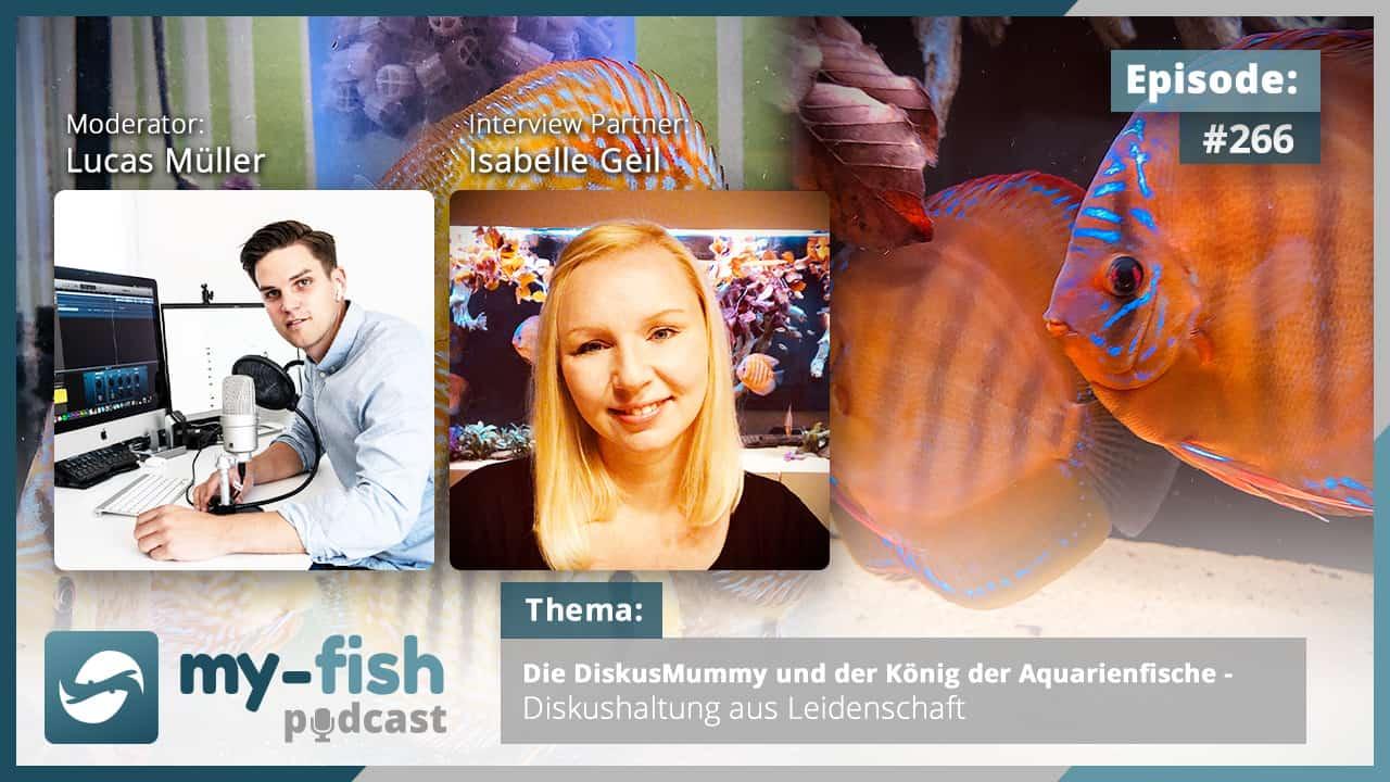 Podcast Episode #266: Die DiskusMummy und der König der Aquarienfische - Diskushaltung aus Leidenschaft (Isabelle Geil)