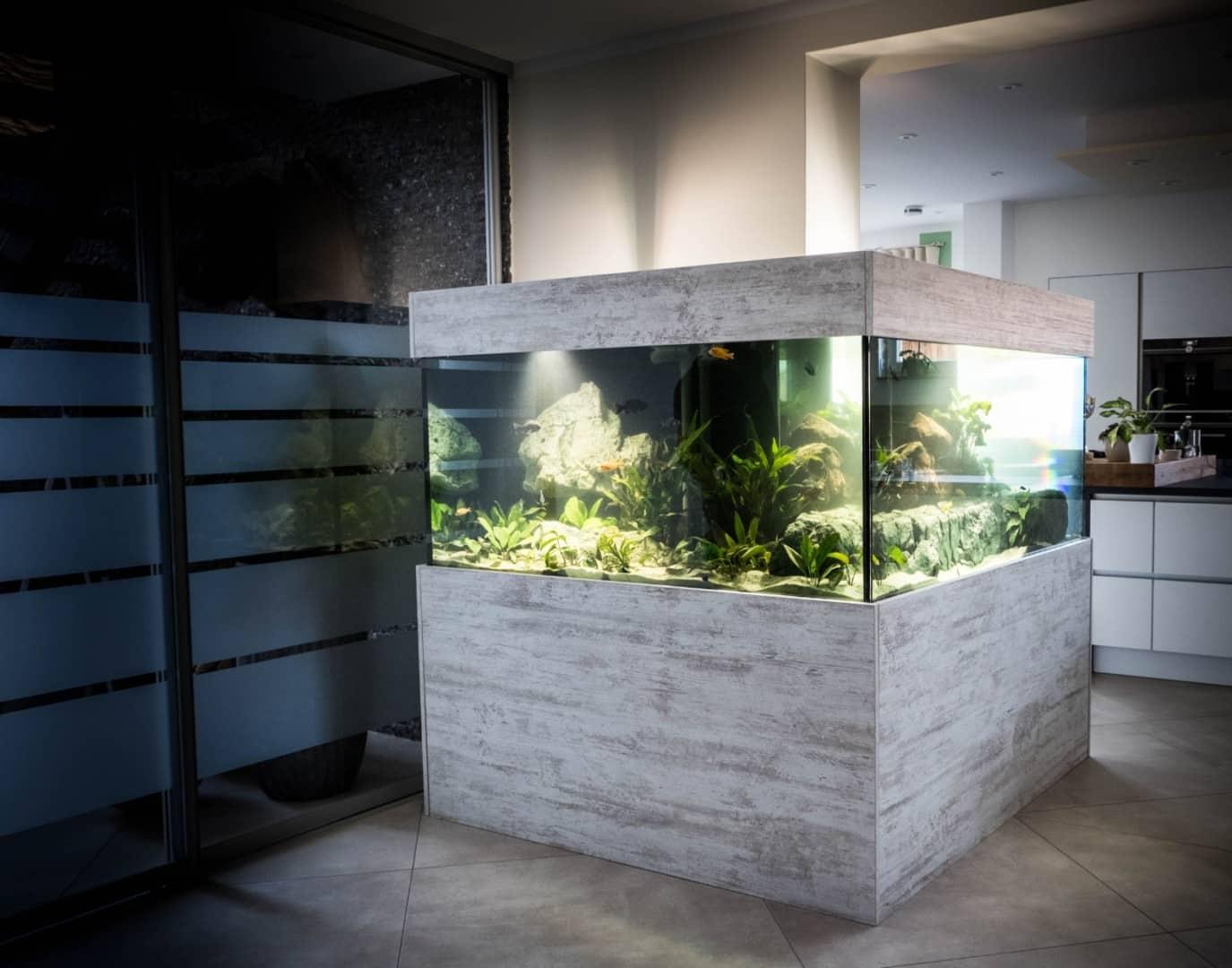 271: Wie wird ein Aquarium gebaut? - Was ist möglich und worauf man achten muss (Sylvio Pönisch) 6