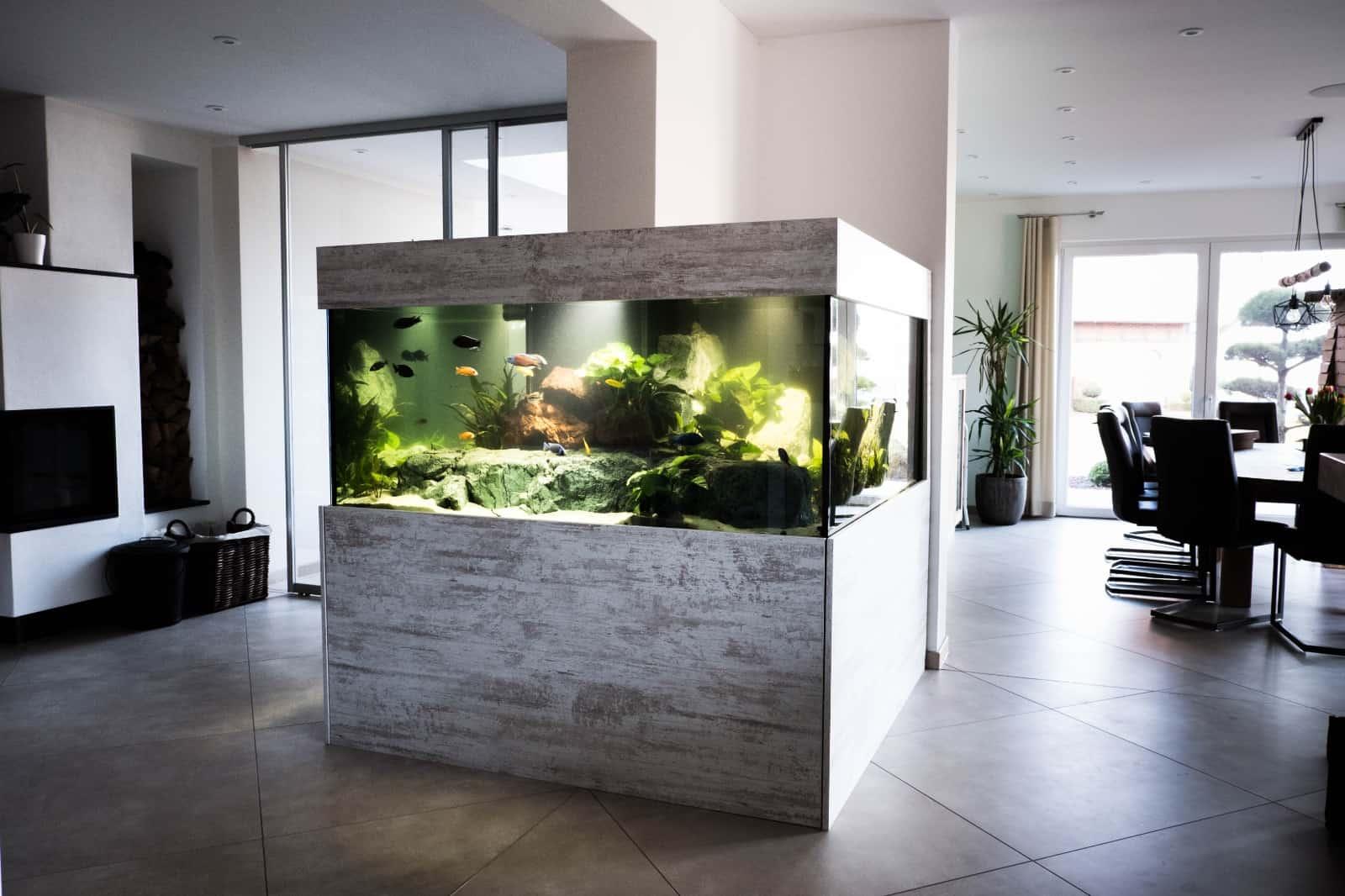 271: Wie wird ein Aquarium gebaut? - Was ist möglich und worauf man achten muss (Sylvio Pönisch) 8