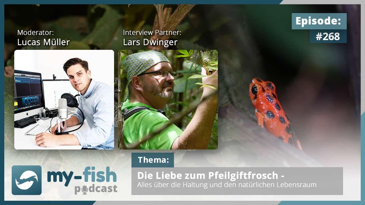 Podcast Episode #268: Die Liebe zum Pfeilgiftfrosch - Alles über die Haltung und den natürlichen Lebensraum (Lars Dwinger) 1