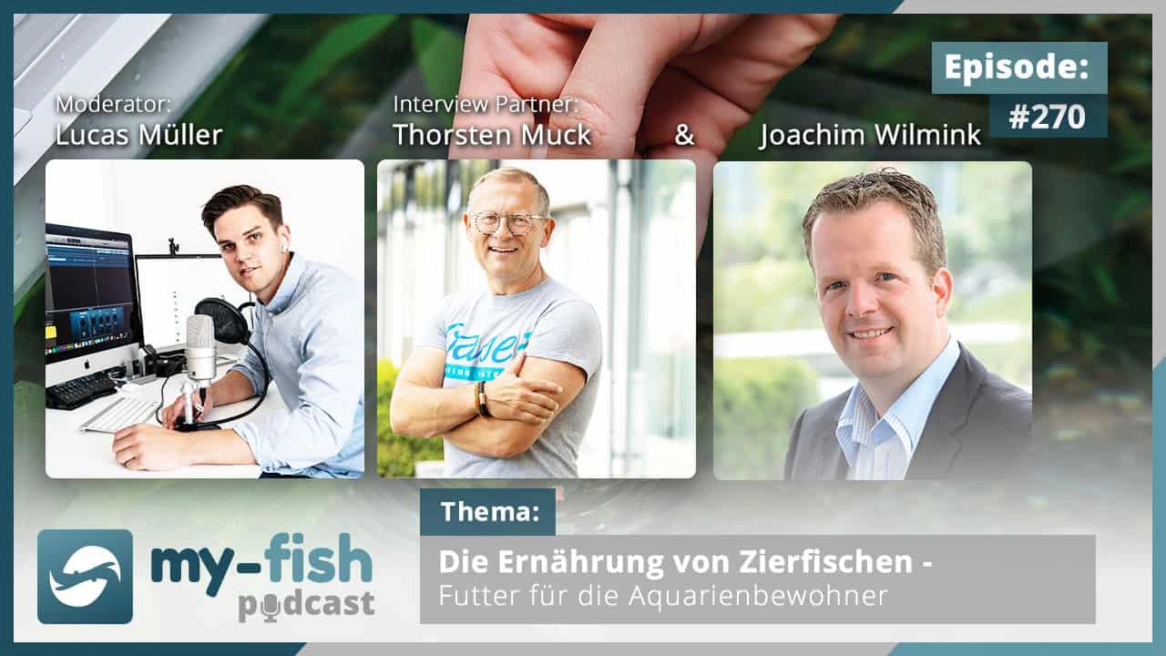 274: Der my-fish Podcast Jahresrückblick 2020 - 45 Episoden mit interessanten Personen aus der Aquaristik 7