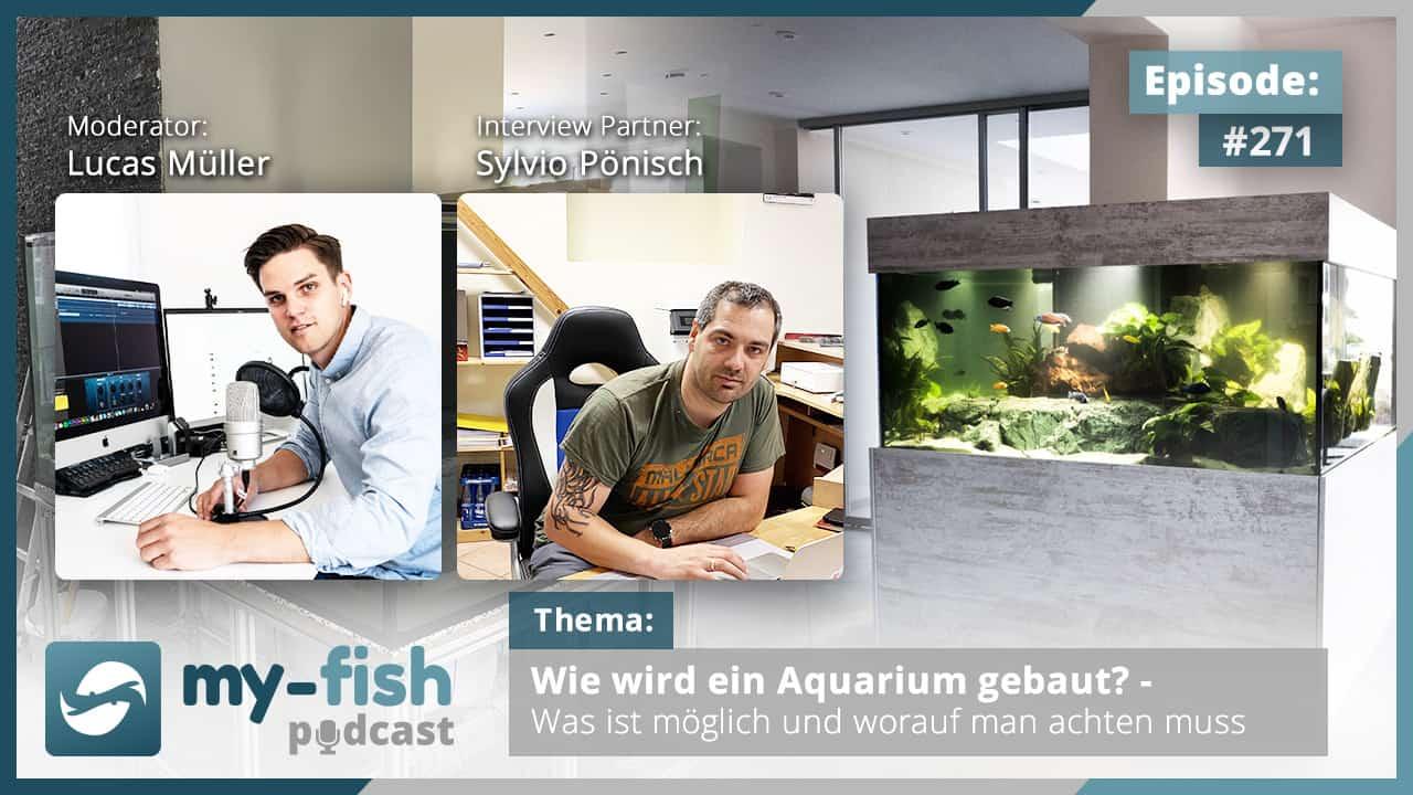Podcast Episode #271: Wie wird ein Aquarium gebaut? - Was ist möglich und worauf man achten muss (Sylvio Pönisch)