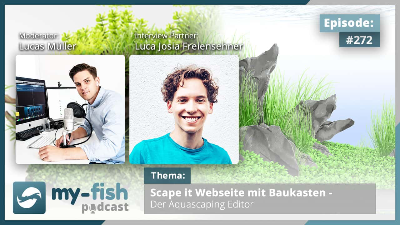 Podcast Episode #272: Scape it Webseite mit Baukasten - Der  Aquascaping Editor (Luca Josia Freiensehner)