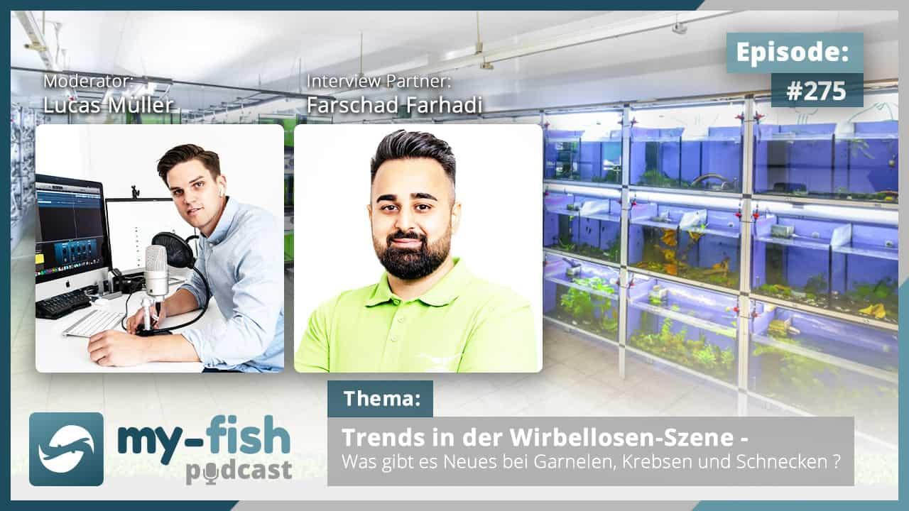 275: Trends in der Wirbellosen-Szene - Was gibt es Neues bei Garnelen, Krebsen und Schnecken? (Farschad Farhadi) 1