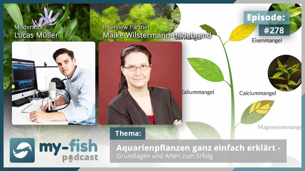 Podcast Episode #278: Aquarienpflanzen ganz einfach erklärt - Grundlagen und Arten zum Erfolg (Maike Wilstermann-Hildebrand) 1