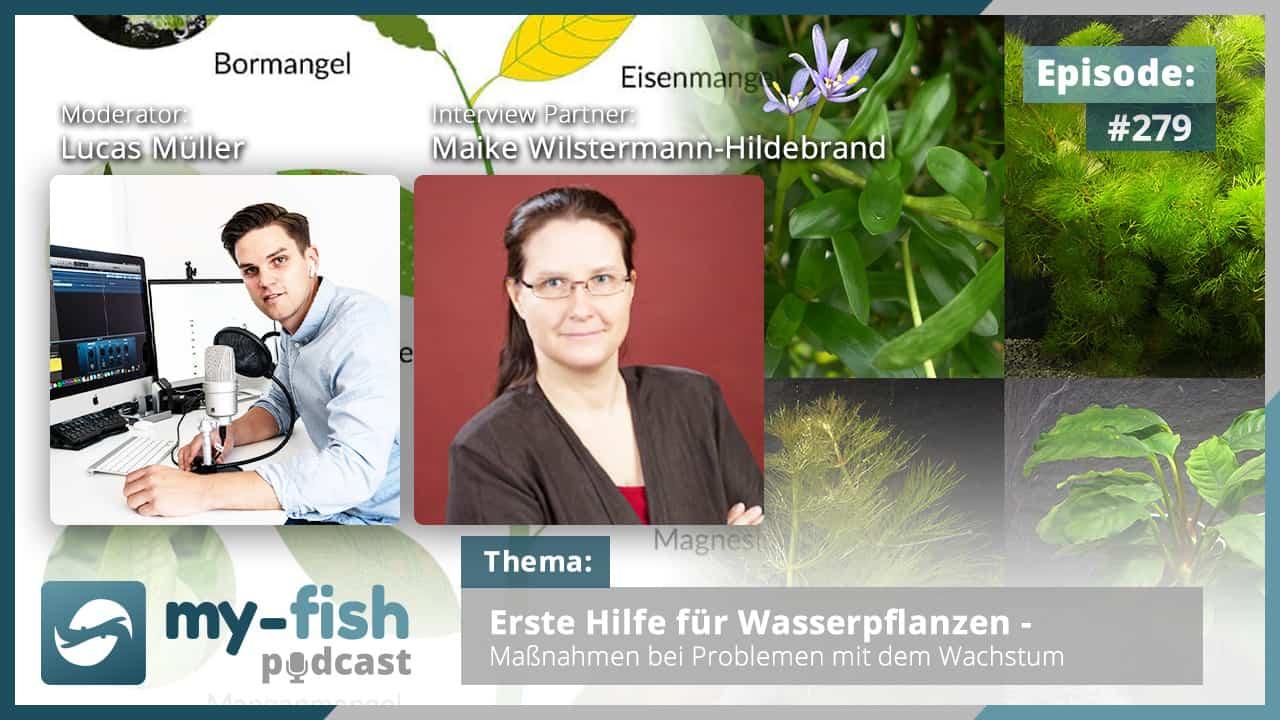 Podcast Episode #279: Erste Hilfe für Wasserpflanzen – Maßnahmen bei Problemen mit dem Wachstum (Maike Wilstermann-Hildebrand)