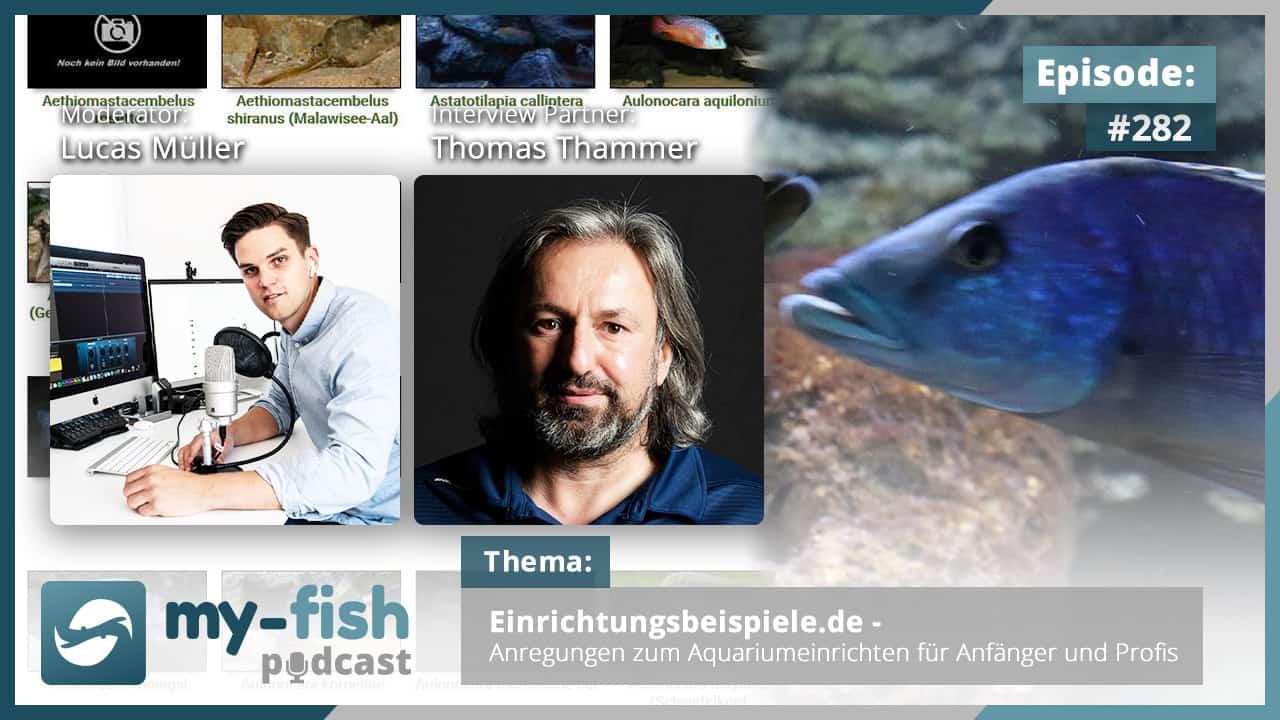 282: Einrichtungsbeispiele.de - Anregungen zum Aquariumeinrichten für Anfänger und Profis (Thomas Thammer) 1