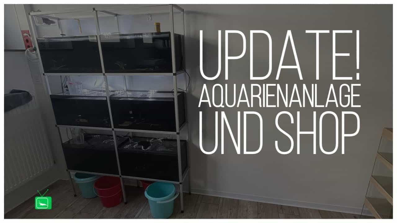 GarnelenTv Video Tipp: Roomtour durch den Showroom