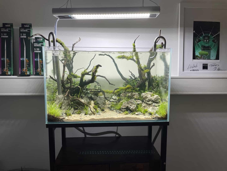 287: Live-Streaming in der Aquaristik - Gemeinsam ein Aquarium einrichten (Nature eScape & GarnelenTv) 13
