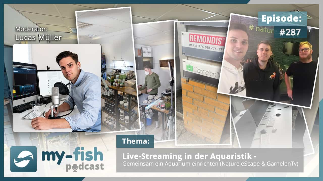 Podcast Episode #287: Live-Streaming in der Aquaristik - Gemeinsam ein Aquarium einrichten (Nature eScape & GarnelenTv)