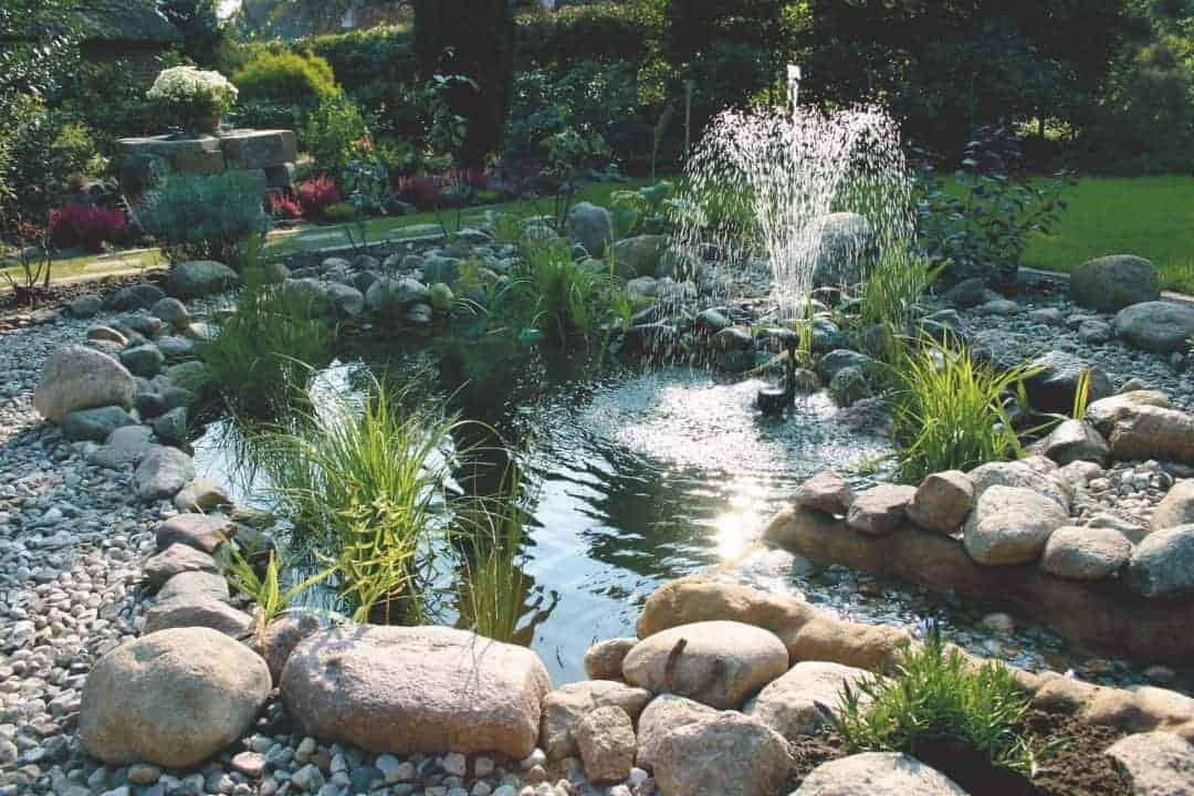294: Der Fischteich als Gartenteich - Eine Oase im Garten (Harro Hieronimus) 2