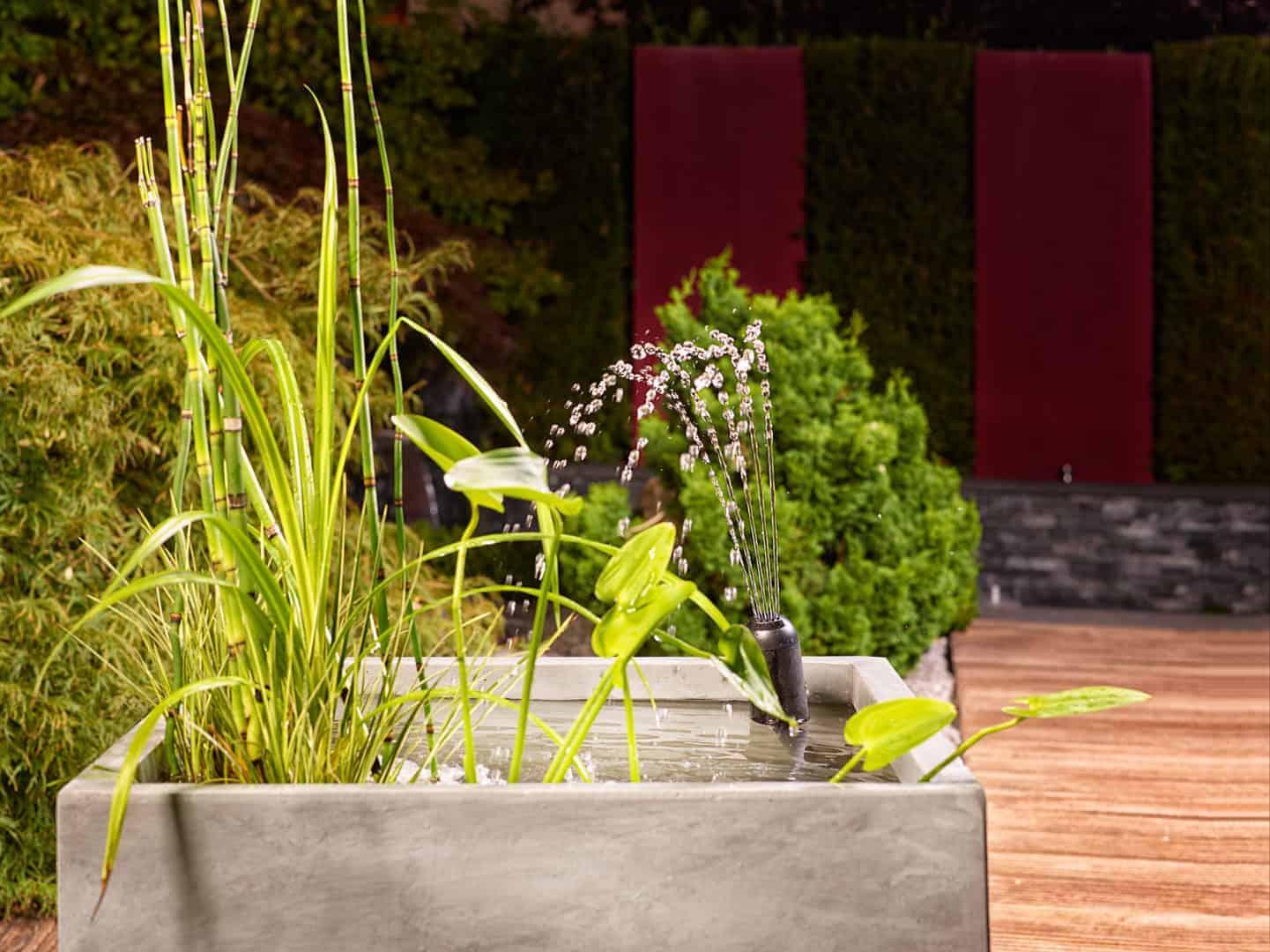 294: Der Fischteich als Gartenteich - Eine Oase im Garten (Harro Hieronimus) 4