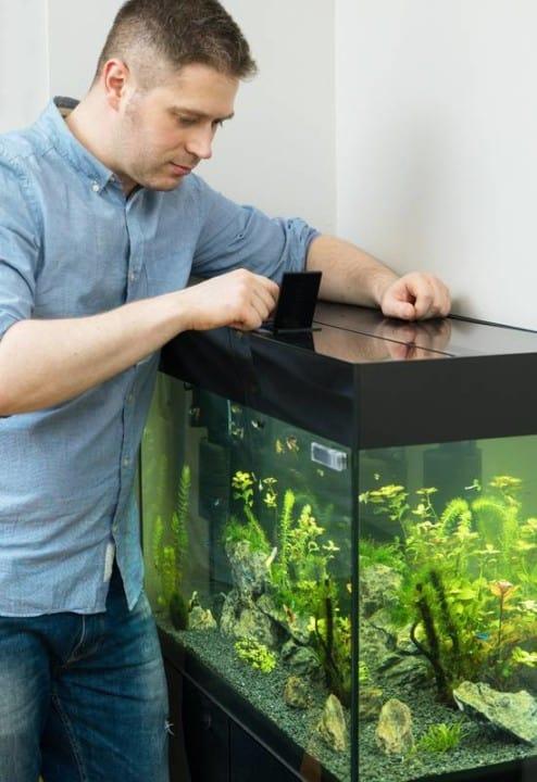 Urlaubs-Checkliste für das Aquarium 1