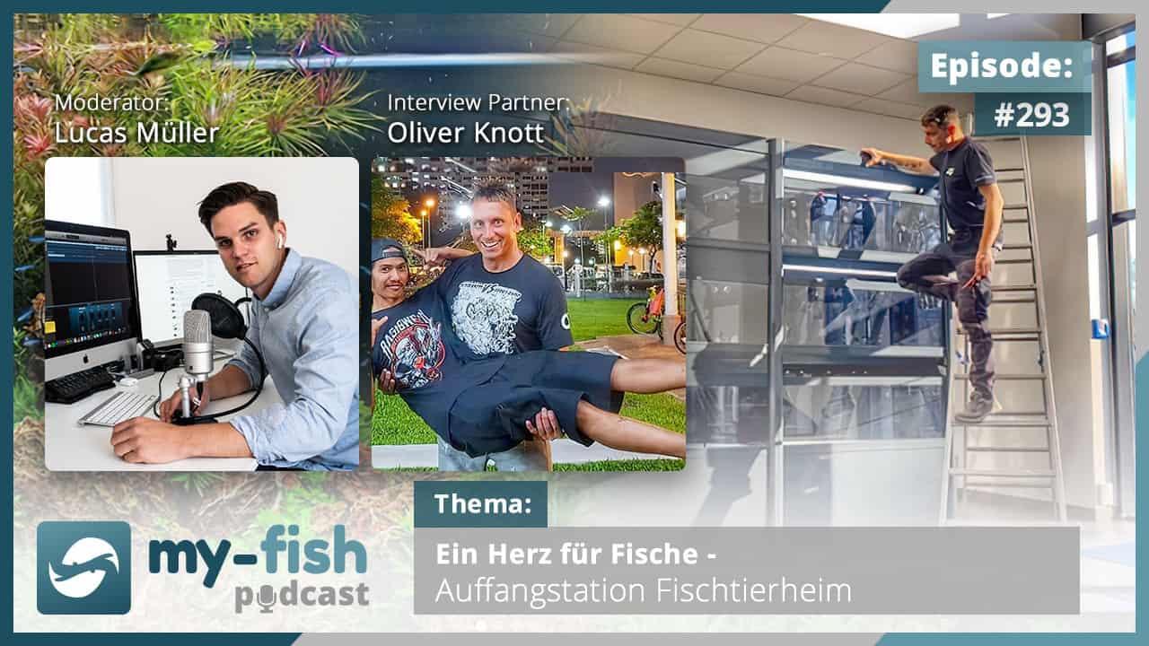 293: Ein Herz für Fische - Auffangstation Fischtierheim (Oliver Knott) 1
