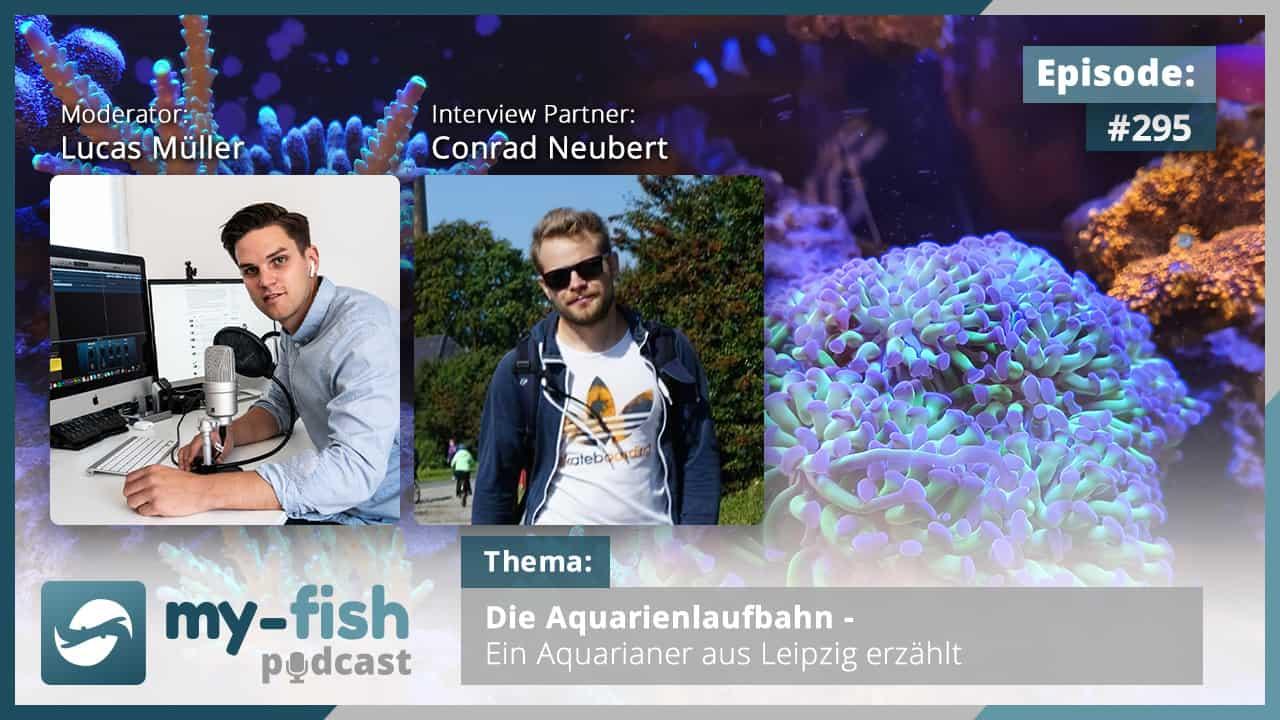 Podcast Episode #295: Die Aquarienlaufbahn - Ein Aquarianer aus Leipzig erzählt (Conrad Neubert)