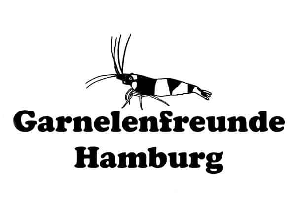 299: AKWB Jahreshauptversammlung - Erfahrungsaustausch rund um Garnelen, Krebse & Schnecken (Lars Dwinger) 3