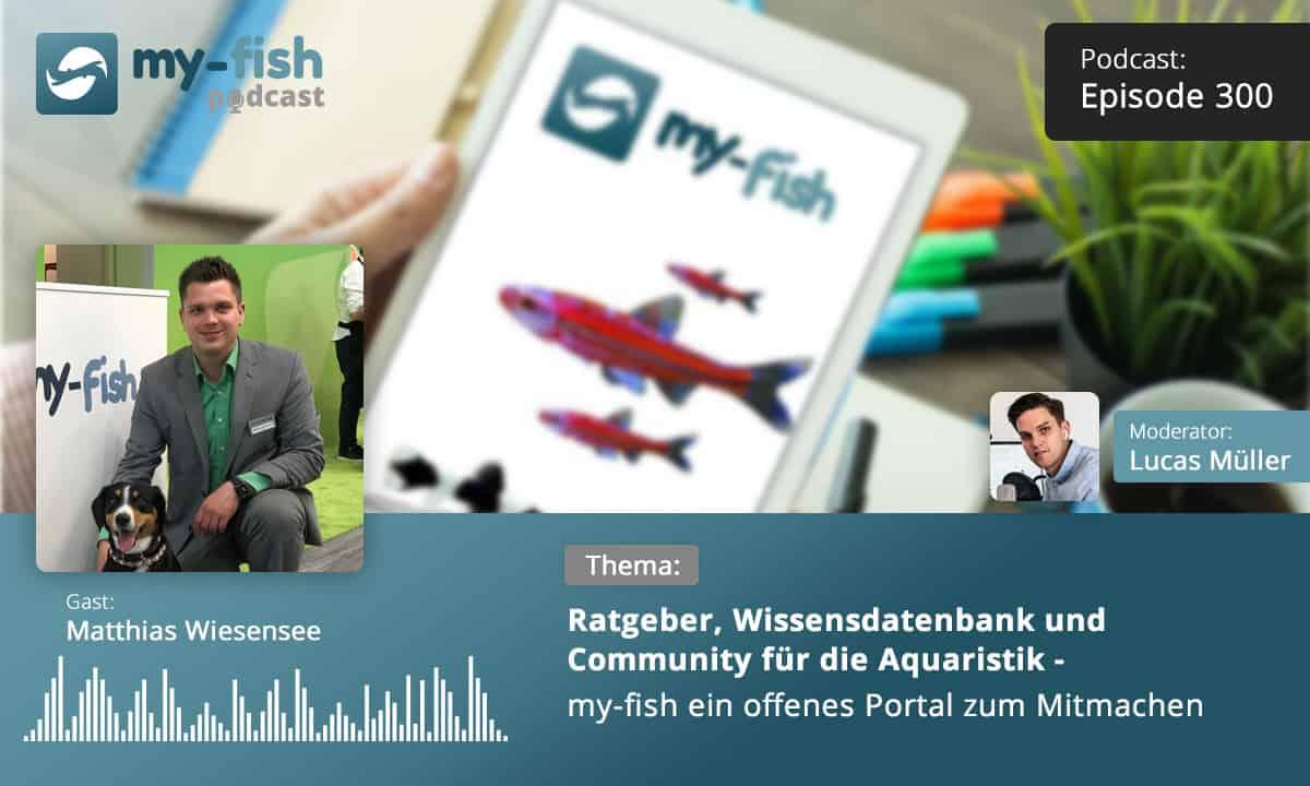 Podcast Episode #300: Ratgeber, Wissensdatenbank und Community für die Aquaristik - my-fish ein offenes Portal zum Mitmachen (Matthias Wiesensee) 1