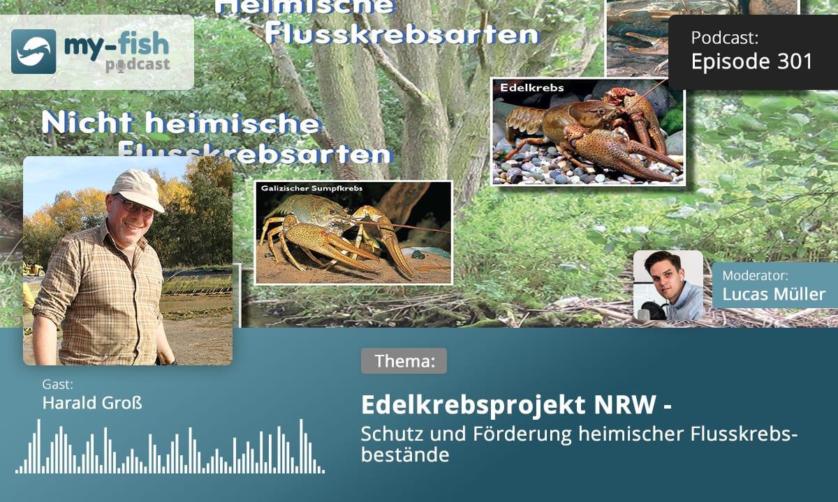 301: Edelkrebsprojekt NRW - Schutz und Förderung heimischer Flusskrebsbestände (Harald Groß) 1